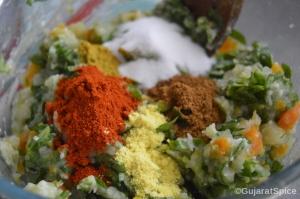 Chilli powder, cumin and coriander powder, salt, turmeric, garam masala and asafetida